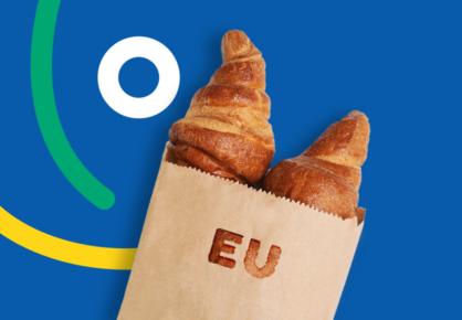 Iki sausio 31 d. domenas .EU tik 1.99 EUR!